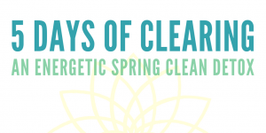 5 Days of Clearing-3